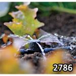 HOZELOCK Automatic Watering System Inline Adjustable Mini Sprinkler 2786 - U.K